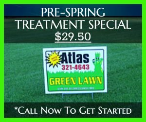 Atlas Green Lawn - Spring Treatment